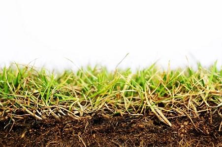 CIAg De la connaissance de la biologie des sols et de ses fonctions, à son pilotage