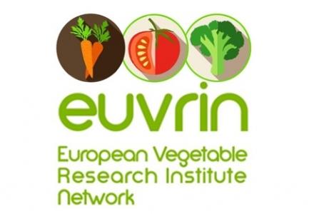 EUVRIN - IPM 2019 meeting, les 14 et 15 novembre 2019, à Saint Pol de Léon