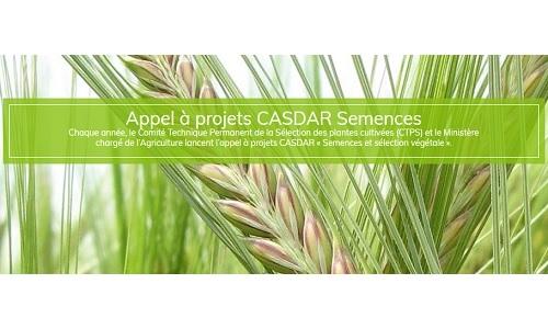 Ouverture de l'AAP CASDAR Semences 2020