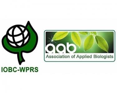 Séminaire dédié à la protection intégrée des légumes de plein champ