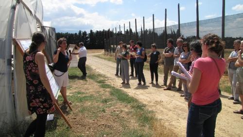 Journée Thématique PIClég « Approche système » le 17 juin 2014 à Alénya