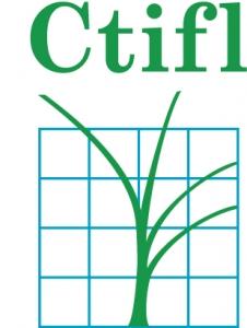 Article Le greffage des cultures légumières en France et dans le monde