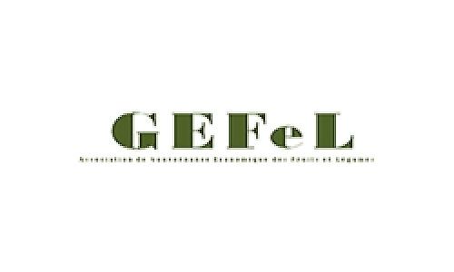 Gefel