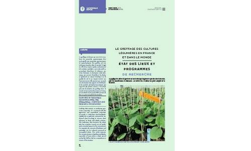 Le greffage des cultures légumières en France et dans le monde