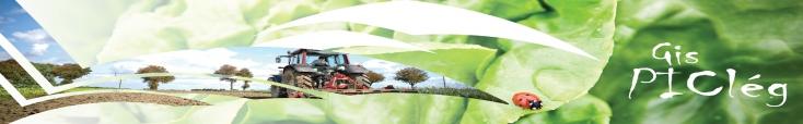 Bienvenue sur le site du GIS PICLég, production intégrée en cultures légumières